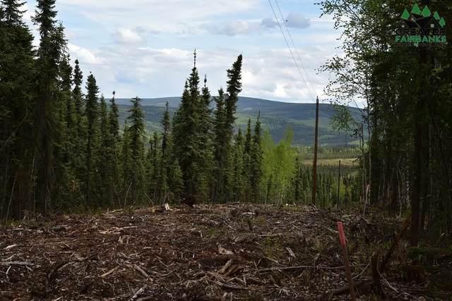 L5 Himilaya Road, Fairbanks, AK 99712 (MLS #143444) :: Madden Real Estate