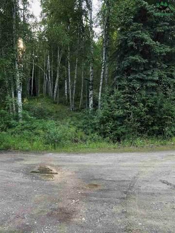 NHN Justin Drive, Fairbanks, AK 99712 (MLS #143604) :: RE/MAX Associates of Fairbanks