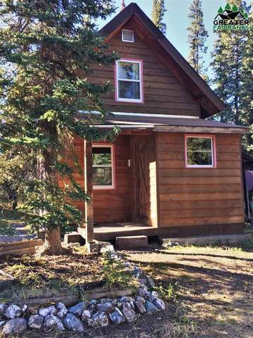 Mile 261 Parks Highway, Healy, AK 99743 (MLS #143823) :: Powered By Lymburner Realty