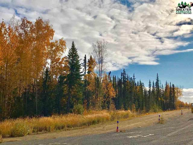 LOT 13 Manley Airport, Manley, AK 99756 (MLS #143845) :: RE/MAX Associates of Fairbanks