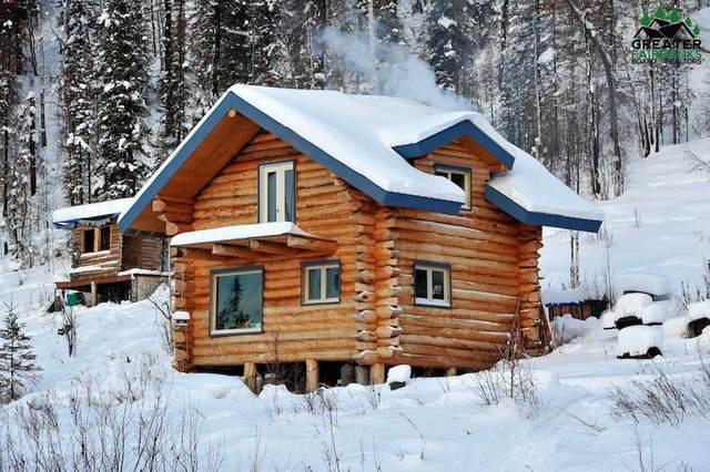 NHN Chatanika River, Fairbanks, AK 99777 (MLS #143895) :: Powered By Lymburner Realty