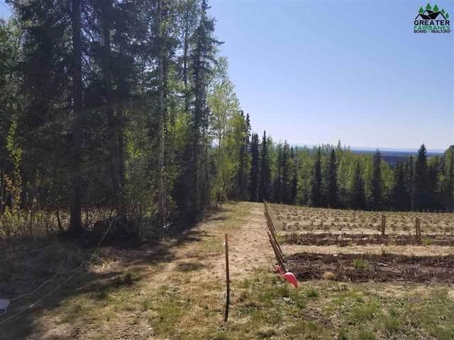 NHN Tribulation Trail, Fairbanks, AK 99709 (MLS #143902) :: Powered By Lymburner Realty