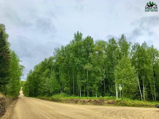 nhn Frida Way, Fairbanks, AK 99709 (MLS #143918) :: Powered By Lymburner Realty