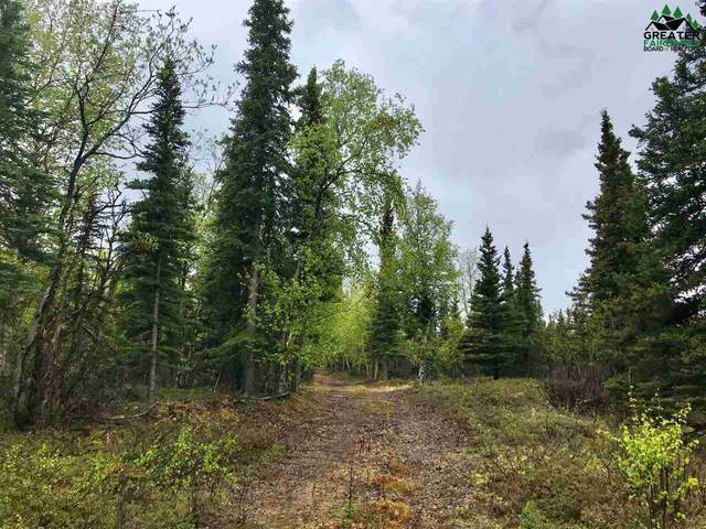 NHN Hilltop Road, Healy, AK 99743 (MLS #143930) :: Powered By Lymburner Realty