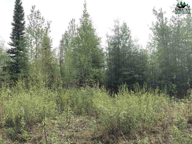 Nhn Richardson Hwy, Salcha, AK 99714 (MLS #143945) :: RE/MAX Associates of Fairbanks