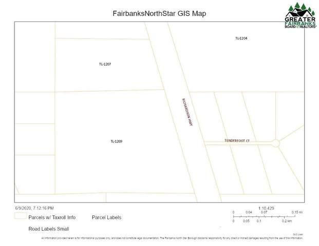 NHN Richardson Highway, Salcha, AK 99714 (MLS #144137) :: Powered By Lymburner Realty