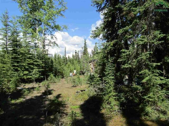 T5B3 Spruce Road, Delta Junction, AK 99737 (MLS #144176) :: RE/MAX Associates of Fairbanks