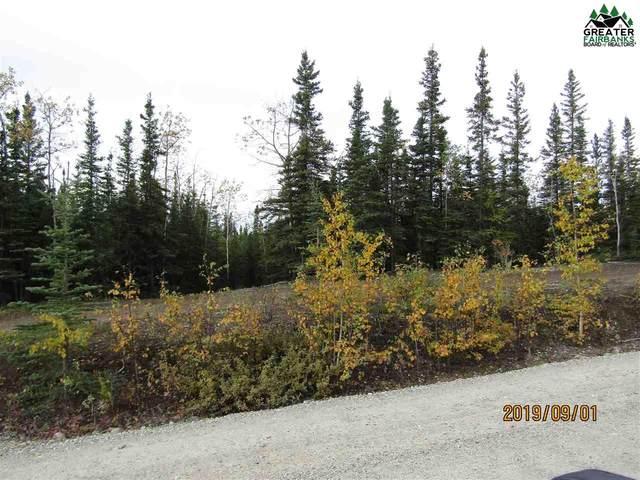 L13 BB Siedschlag Drive, Delta Junction, AK 99737 (MLS #144302) :: RE/MAX Associates of Fairbanks