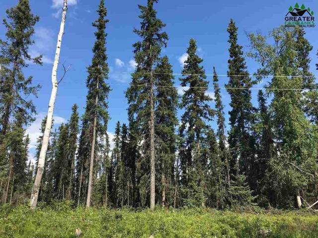 LOT 24 Chena Bend Drive, Fairbanks, AK 99705 (MLS #144415) :: Powered By Lymburner Realty