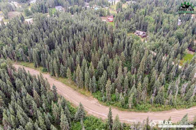 NHN Lowood, North Pole, AK 99705 (MLS #144446) :: RE/MAX Associates of Fairbanks