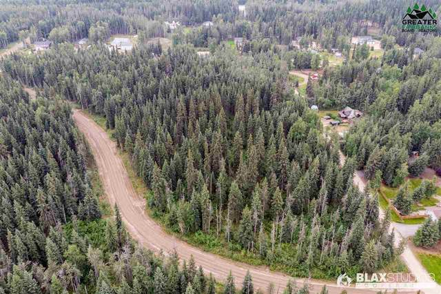 NHN Maude Boyle Drive, North Pole, AK 99705 (MLS #144458) :: Powered By Lymburner Realty