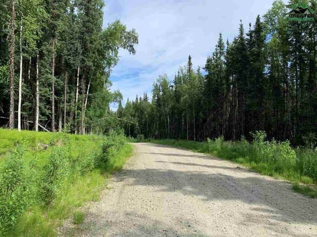 NHN Arctic Tern Drive, Fairbanks, AK 99712 (MLS #144488) :: RE/MAX Associates of Fairbanks