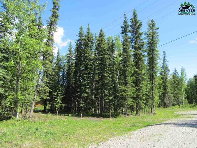 Lot 2 Clear Water Court, North Pole, AK 99705 (MLS #144532) :: Powered By Lymburner Realty