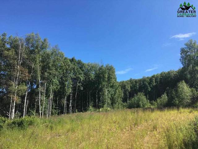 NHN Westwick Drive, Fairbanks, AK 99712 (MLS #144595) :: Powered By Lymburner Realty