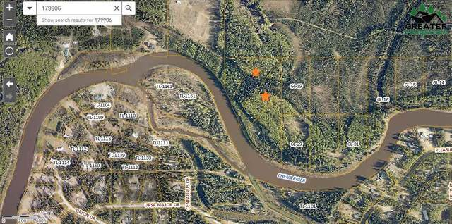Lot 2 Chena River, North Pole, AK 99705 (MLS #144605) :: RE/MAX Associates of Fairbanks