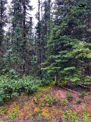 L 56 Bb Cranberry Drive, Delta Junction, AK 99737 (MLS #144700) :: Powered By Lymburner Realty