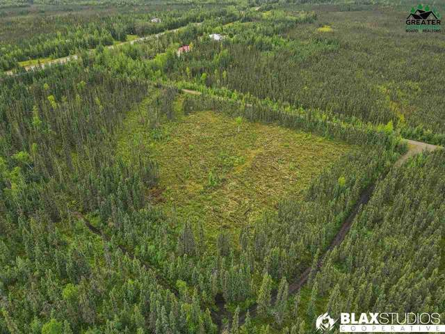NHN Aicuz Avenue, Salcha, AK 99714 (MLS #144755) :: RE/MAX Associates of Fairbanks