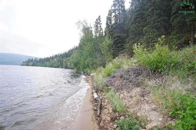 Lot 2 George Lake, Delta Junction, AK 99737 (MLS #144818) :: RE/MAX Associates of Fairbanks