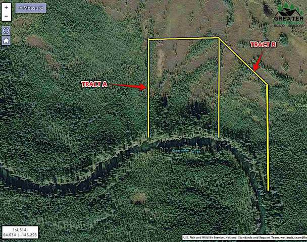 NHN Clearwater River, BIG DELTA, AK 99737 (MLS #144866) :: RE/MAX Associates of Fairbanks