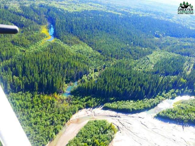 NHN Wood River, Fairbanks, AK 99701 (MLS #144875) :: RE/MAX Associates of Fairbanks