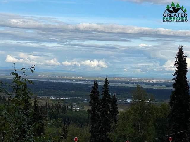 1528 Alderwood Drive, Fairbanks, AK 99709 (MLS #144983) :: Powered By Lymburner Realty