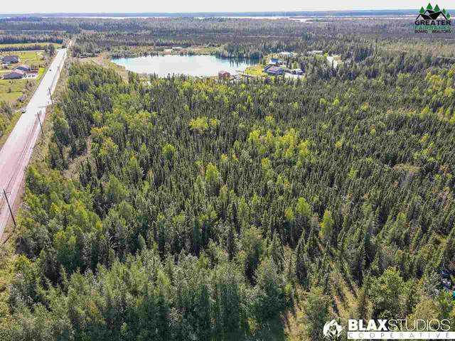 NHN Homestead Drive, North Pole, AK 99705 (MLS #144993) :: RE/MAX Associates of Fairbanks