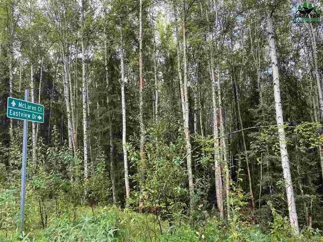 NHN Eastview Drive, Fairbanks, AK 99712 (MLS #145014) :: Powered By Lymburner Realty