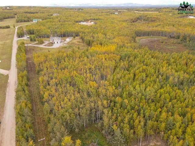 NHN Foxy Lane, Delta Junction, AK 99737 (MLS #145092) :: RE/MAX Associates of Fairbanks