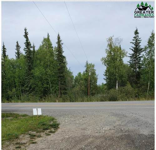 NHN Parks Highway, Nenana, AK 99760 (MLS #145094) :: RE/MAX Associates of Fairbanks