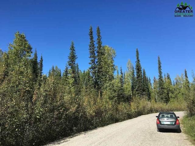 nhn Silver Lining Drive, Fairbanks, AK 99705 (MLS #145120) :: Powered By Lymburner Realty