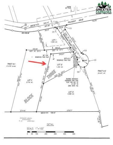 L12 B3 Engineer Creek Court, Fairbanks, AK 99712 (MLS #145222) :: RE/MAX Associates of Fairbanks