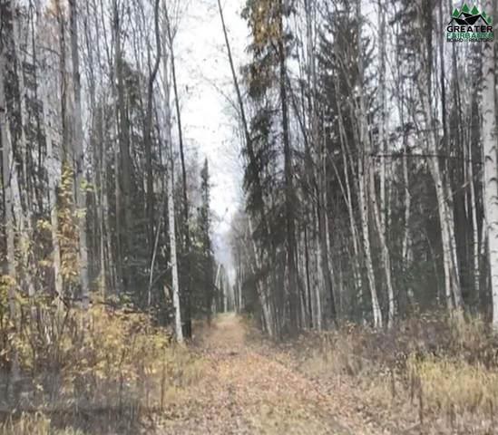NHN Trickey Avenue, Fairbanks, AK 99712 (MLS #145247) :: RE/MAX Associates of Fairbanks