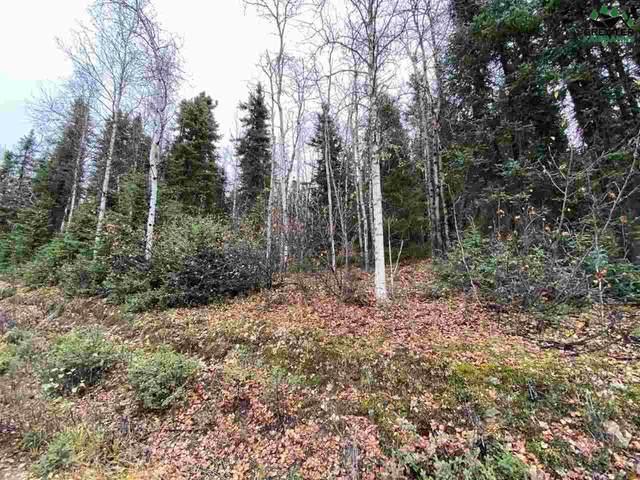 NHN Darling Avenue, Fairbanks, AK 99709 (MLS #145248) :: Powered By Lymburner Realty