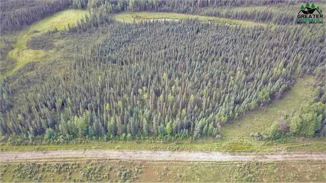 NHN Repp Road, North Pole, AK 99705 (MLS #145285) :: RE/MAX Associates of Fairbanks