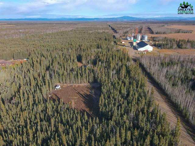 NHN Chase Road, Delta Junction, AK 99737 (MLS #145309) :: RE/MAX Associates of Fairbanks