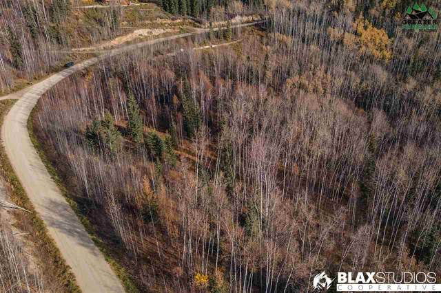 NHN Ridgepointe Drive, Fairbanks, AK 99701 (MLS #145319) :: Powered By Lymburner Realty