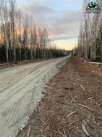 B1LA Raya Rd, Delta Junction, AK 99737 (MLS #145347) :: RE/MAX Associates of Fairbanks