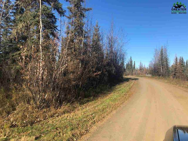nhn Dundee Loop, North Pole, AK 99705 (MLS #145378) :: Powered By Lymburner Realty