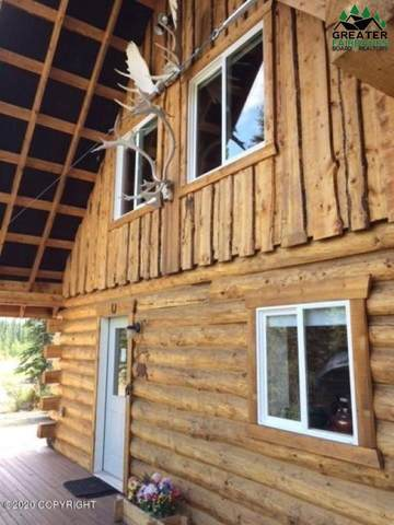 MP 229.50 Parks Highway, Denali National Park, AK 99755 (MLS #145499) :: RE/MAX Associates of Fairbanks