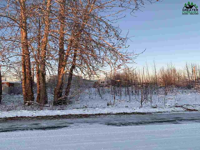 NHN 29TH AVENUE, Fairbanks, AK 99701 (MLS #145529) :: RE/MAX Associates of Fairbanks