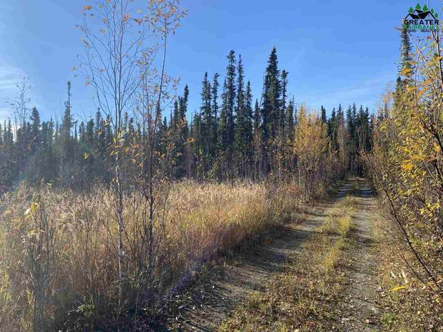 NHN Salcha Star*, Salcha, AK 99714 (MLS #145561) :: RE/MAX Associates of Fairbanks