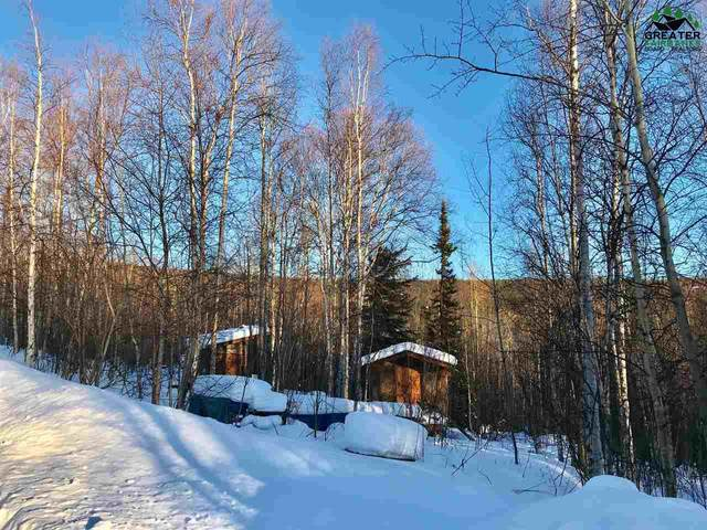 5934 Haystack Drive, Fairbanks, AK 99712 (MLS #145722) :: Powered By Lymburner Realty