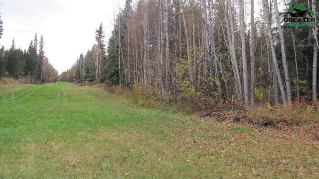 2891 Buzby Road, North Pole, AK 99705 (MLS #145909) :: RE/MAX Associates of Fairbanks