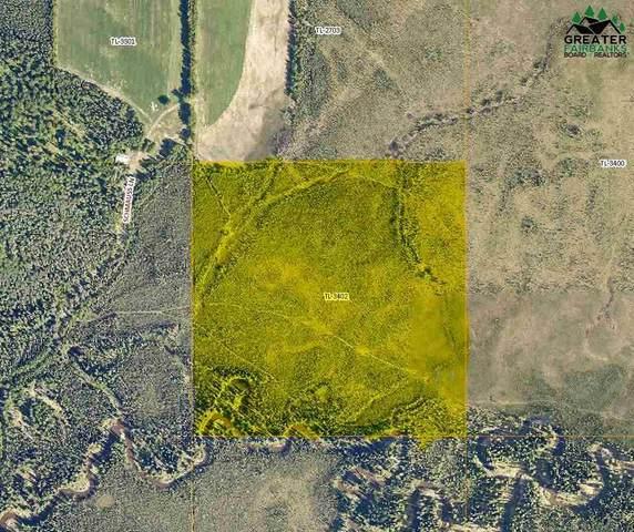 Lot 3402 Schmauss Lane, Salcha, AK 99714 (MLS #145972) :: RE/MAX Associates of Fairbanks