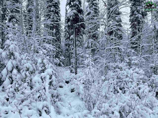 NHN Lot 16 Lucille Avenue, North Pole, AK 99705 (MLS #145986) :: Powered By Lymburner Realty