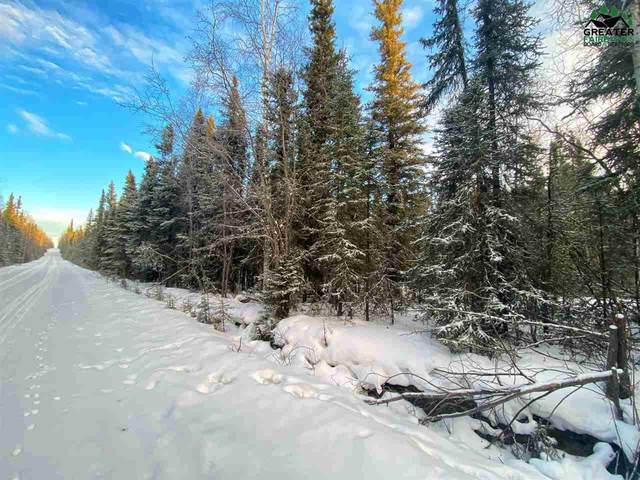 Lot 6 Block C Leng Road, Delta Junction, AK 99737 (MLS #145999) :: Powered By Lymburner Realty