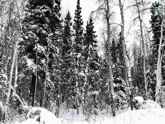 NHN Hopper Creek Drive, Fairbanks, AK 99712 (MLS #146019) :: Powered By Lymburner Realty