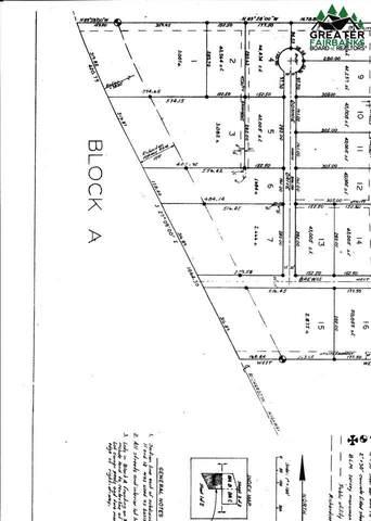 L30 BA Loni Lane, Delta Junction, AK 99737 (MLS #146063) :: RE/MAX Associates of Fairbanks