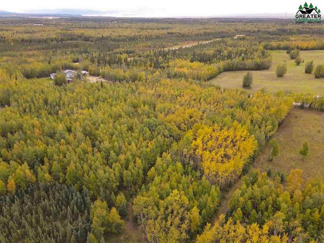 L8 Foxy Lane, Delta Junction, AK 99737 (MLS #146127) :: Powered By Lymburner Realty