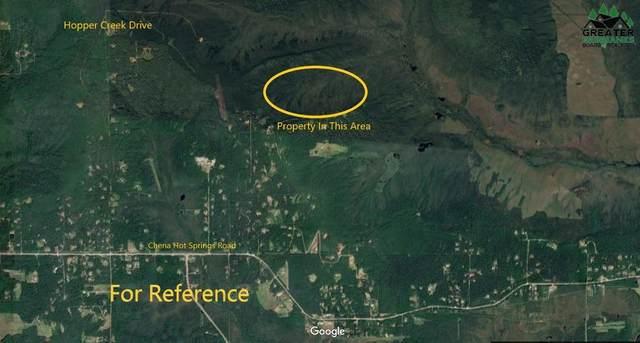 NHN Hopper Creek, Fairbanks, AK 99712 (MLS #146448) :: RE/MAX Associates of Fairbanks